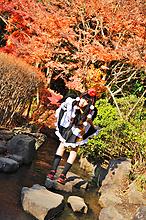 Tenshi Miyu - Picture 14