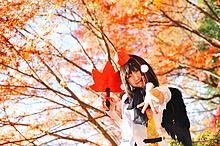 Tenshi Miyu - Picture 4